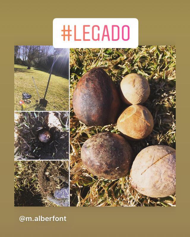 #LEGADO 1